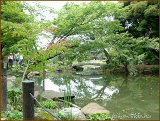 20170807  庭  4    肥後細川庭園