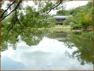20170807  庭  7    肥後細川庭園