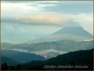 20170916  富士山  5    山梨にて