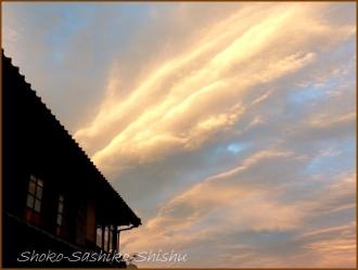 20170916  富士山  11    山梨にて
