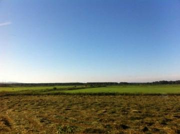 道北牧草地