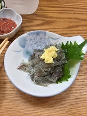 2017江の島ご飯1