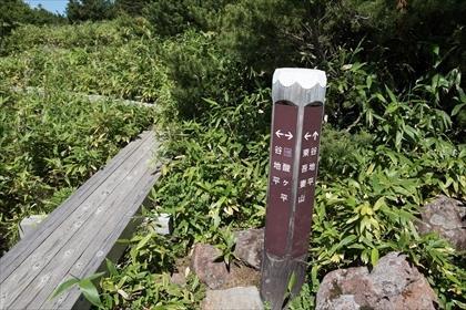 2017-7-26 吾妻山31 (1 - 1DSC_2778)_R