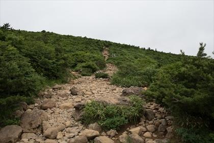 2017-7-27 安達太良山14 (1 - 1DSC_2809)_R