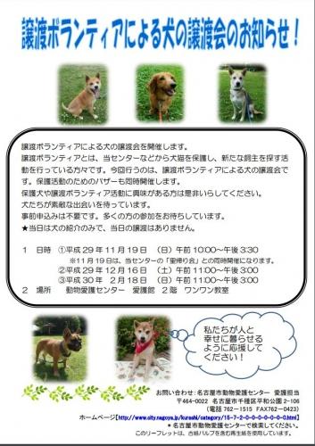 名古屋市動物愛護センター