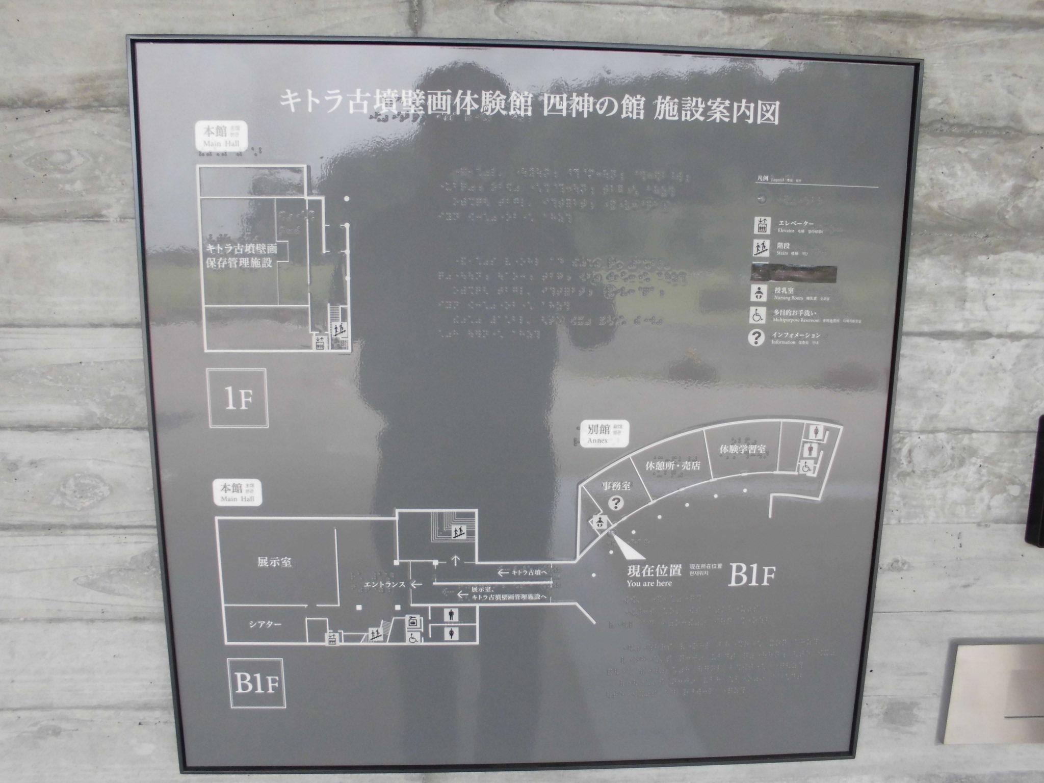CIMG0245.jpg