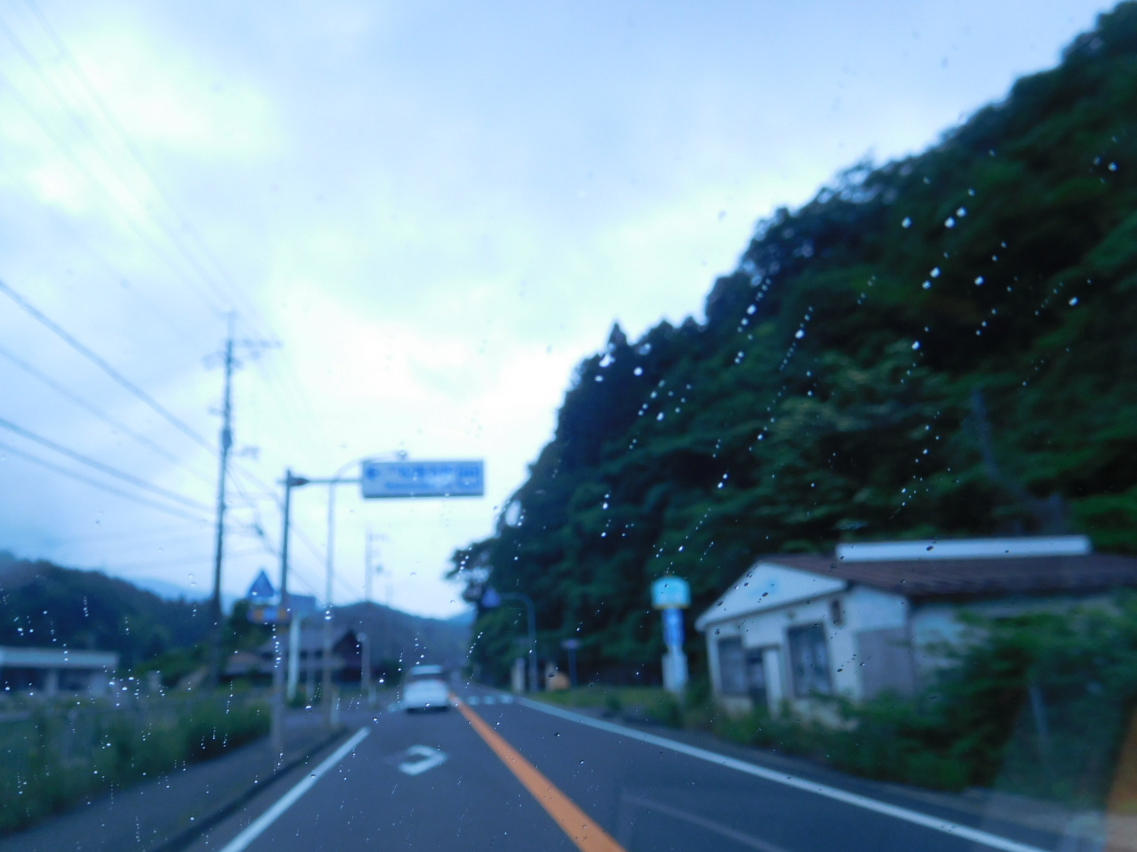 DSCN2217.jpg