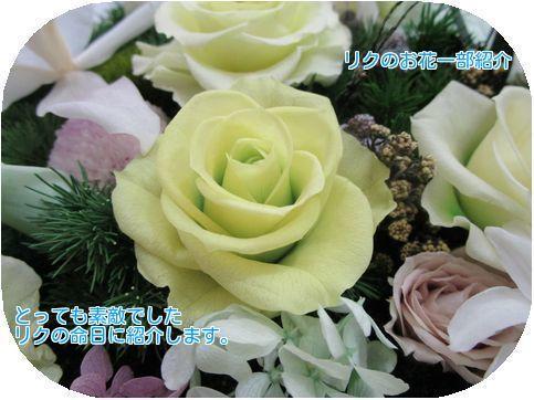 ⑨プリザのお花