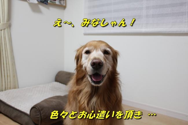 笑顔とお礼 003
