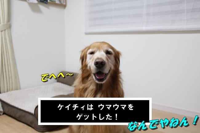 笑顔とお礼 006