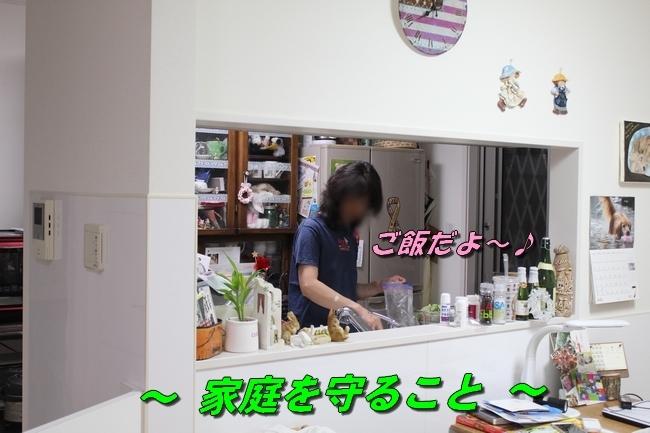 ママとイカ 002