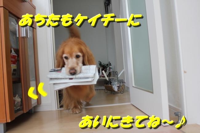新聞配達 066