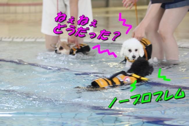 ニコちゃんモコちゃんココネちゃんお水の日 001