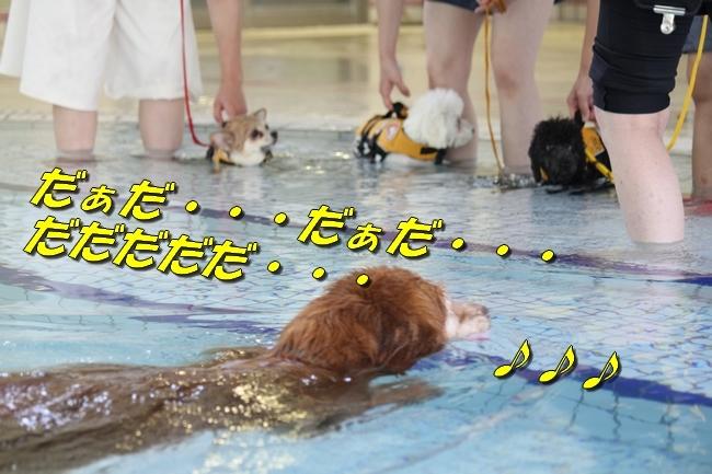 ニコちゃんモコちゃんココネちゃんお水の日 006