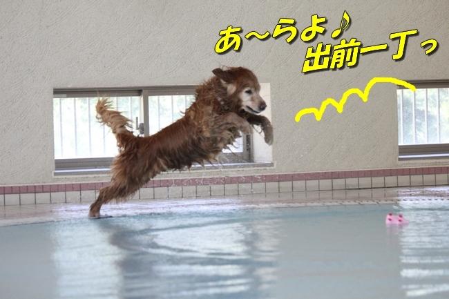 ニコちゃんモコちゃんココネちゃんお水の日 010