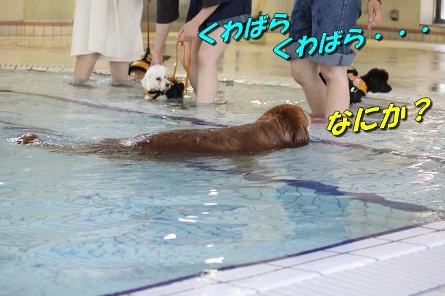 ニコちゃんモコちゃんココネちゃんお水の日 014