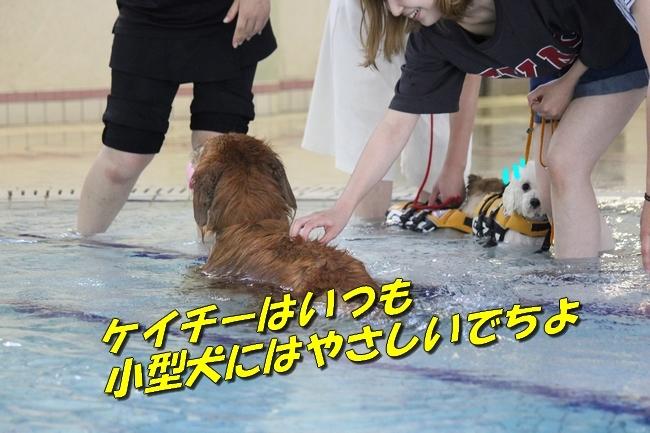 ニコちゃんモコちゃんココネちゃんお水の日 017