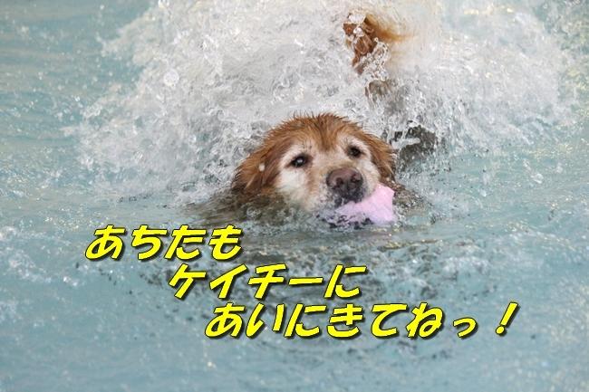 ニコちゃんモコちゃんココネちゃんお水の日 022