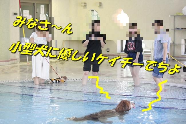 ニコちゃんモコちゃんココネちゃんお水の日 023