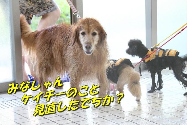 ニコちゃんモコちゃんココネちゃんお水の日 089