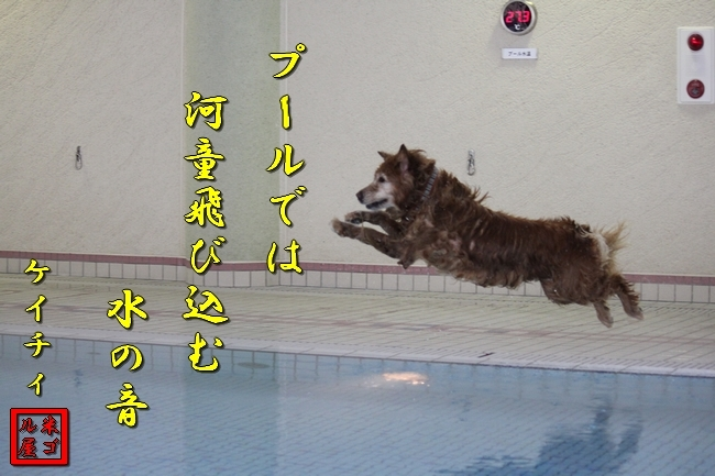 ティアナちゃんこまりちゃんケイティ 097