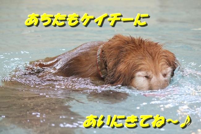 ニコちゃんモコちゃんココネちゃんお水の日 034