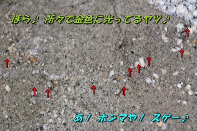 2017 夏の遠征 1 515