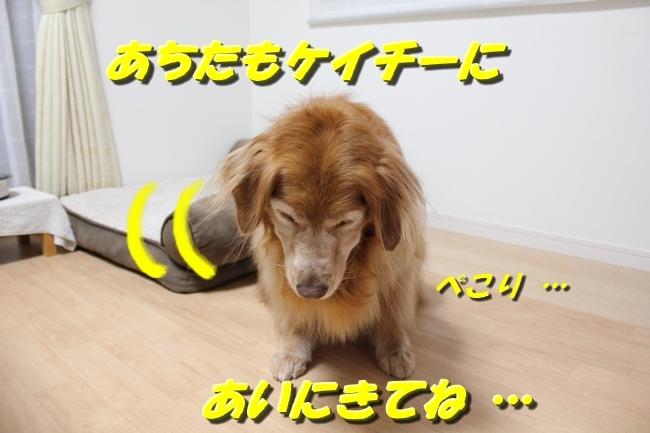 笑顔とお礼 009