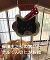 たま三郎 image3