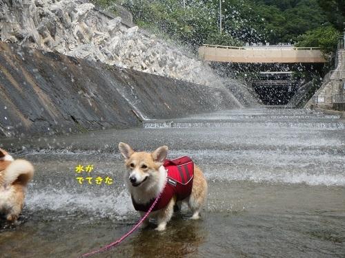 水がでてきた