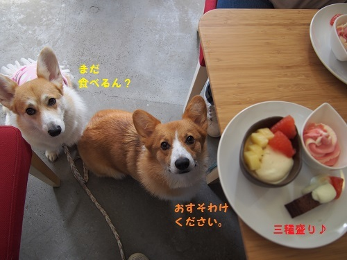 デザート三種もり