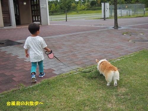 台風前のお散歩