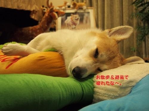 疲れたなぁ、、、
