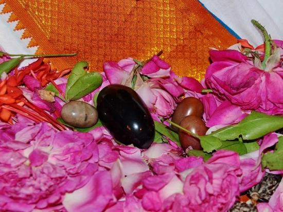 Swami Premanandal_lingams