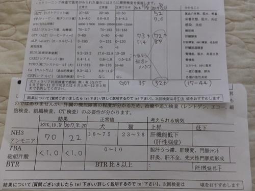 DSCF1710-30.jpg
