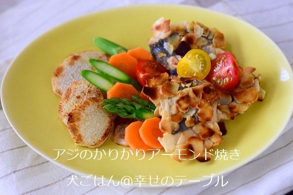 アジのかりかりアーモンド焼きと長芋ステーキ-2017年4月(ブログ用)
