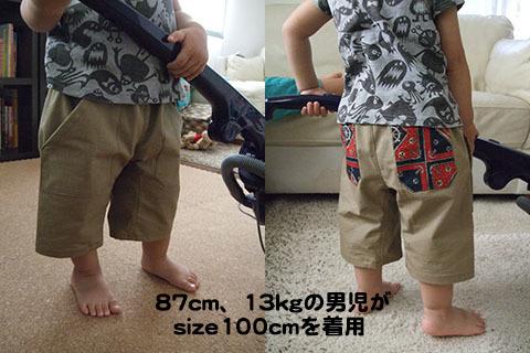170825sakusaku_chaku.jpg