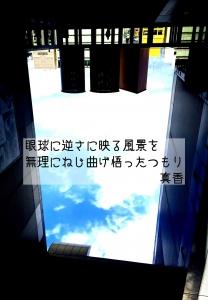 IMG_6456.jpg