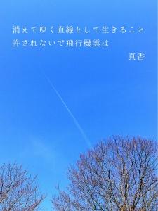 IMG_6946.jpg