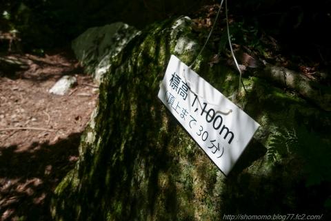 170804NAKAYAMA_08.jpg