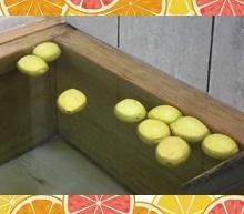 レモン11