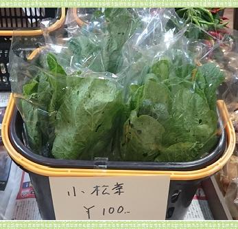 野菜小松菜1