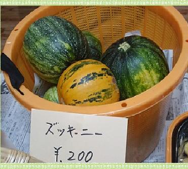 野菜ズッキーニ1