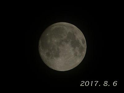 P1320303.jpg