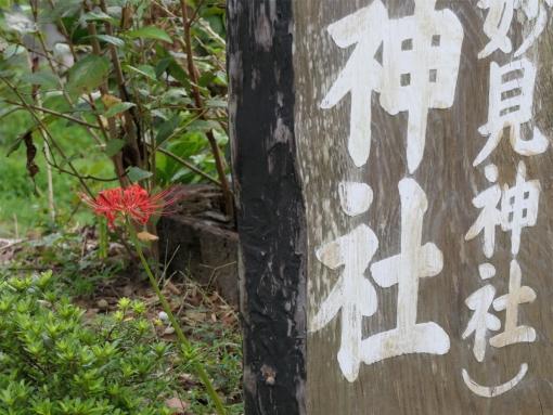 01 myoken higanbana