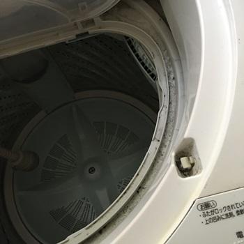 洗濯機掃除前