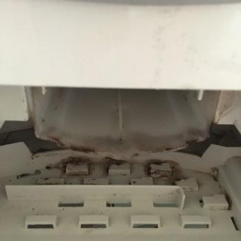 洗濯機柔軟剤入れ掃除前