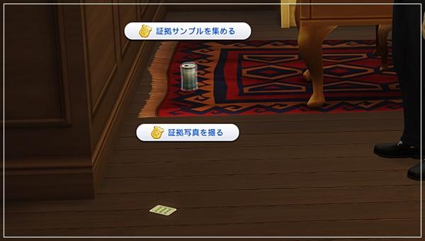 DCareerHijikata2-33.jpg