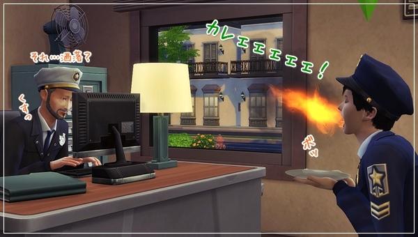 DCareerHijikata3-23.jpg