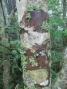 木肌アート